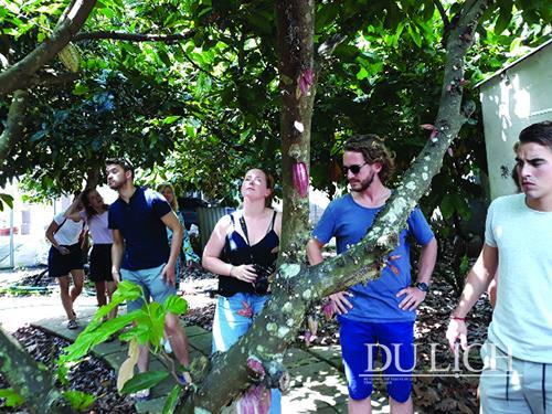 Binon Cacao Park - Mô hình du lịch nông trại và sản xuất sô cô la độc đáo tại Việt Nam