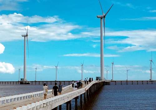 Điện gió Bạc Liêu - Điểm check-in hot nhất Bạc Liêu